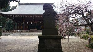 喜多見氷川神社 拝殿前狛犬 (2)