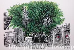 飛木稲荷神社 特製絵葉書 (2)