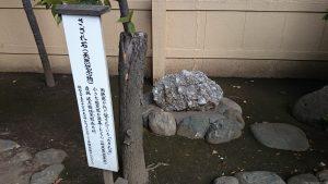 大塚天祖神社 さざれ石