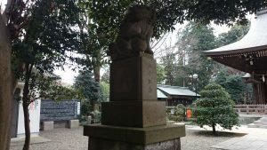喜多見氷川神社 拝殿前狛犬 (1)