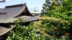 月見岡八幡神社 富士塚山頂からの眺望