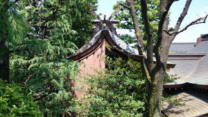 月見岡八幡神社 本殿 (2)
