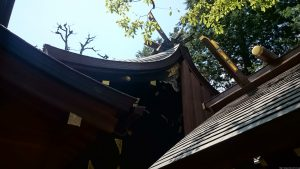 月見岡八幡神社 本殿
