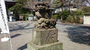 調布青渭神社 狛犬 (2)