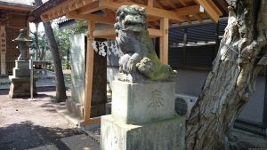 調布市虎狛神社 狛犬 (2)