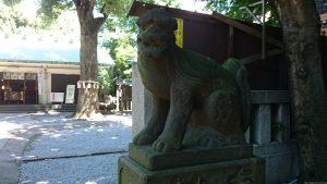 駒込天祖神社 狛犬 (2)
