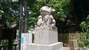 調神社 神使兎 (2)