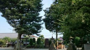 徳丸北野神社 境内風景