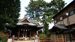 東玉川神社 社殿・御神木