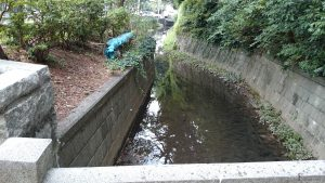 田園調布八幡神社 丸子川(旧六郷用水)