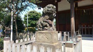 鵜ノ木八幡神社 狛犬 (1)