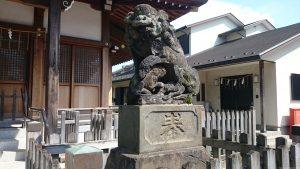 鵜ノ木八幡神社 狛犬 (2)