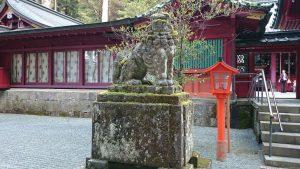 箱根神社 狛犬 (1)