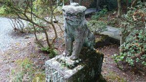 箱根芦川・駒形神社 狛犬 (2)