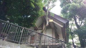 天祖諏訪神社 本殿