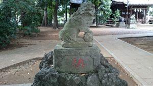 経堂天祖神社 参道狛犬 (1)