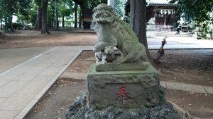 経堂天祖神社 参道狛犬 (2)