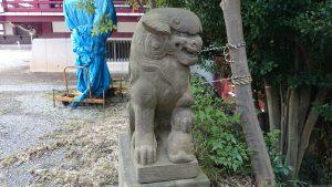 子安八幡神社 狛犬 (2)