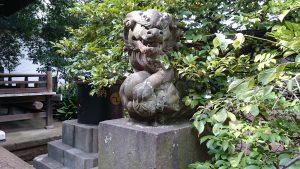 経堂天祖神社 拝殿前狛犬 (2)