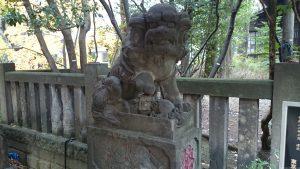 西久保八幡神社 拝殿前狛犬 (1)