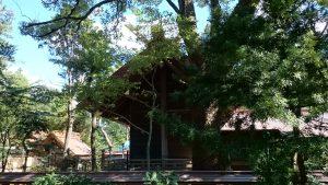 意富比神社(船橋大神宮)本殿