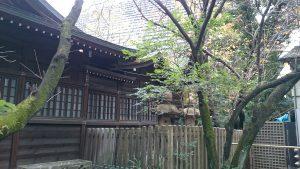 西久保八幡神社 本殿