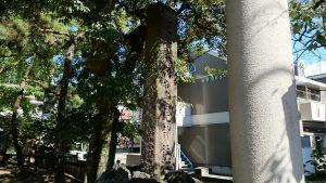 意富比神社(船橋大神宮)社号標