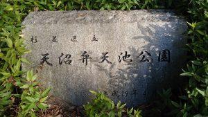 天沼八幡神社 弁天池公園