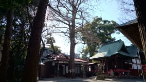 野澤稲荷神社 境内