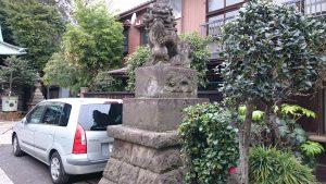 高円寺天祖神社 狛犬 (2)
