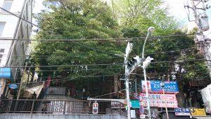 八景天祖神社 (神明山天祖神社) 社頭
