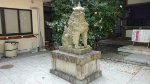雑司が谷大鳥神社 拝殿前狛犬 吽