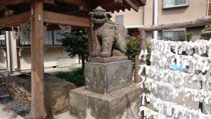 富賀岡八幡宮 狛犬 (2)