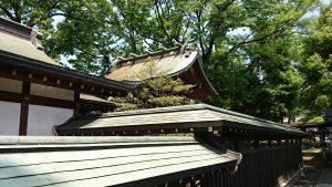 八幡大神社 本殿 (1)