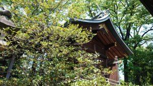 八幡大神社 本殿