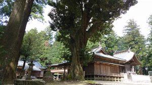 稲田神社 境内