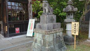 吉田神社 狛犬 (2)