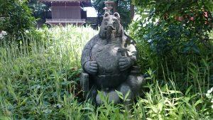 中野氷川神社 狸像