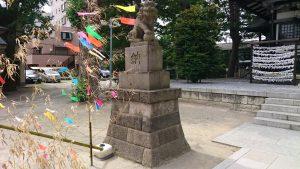 亀有香取神社 拝殿前狛犬 (1)