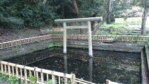 大洗磯前神社 神池