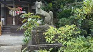産千代稲荷神社 明治35年狛狐 (2)