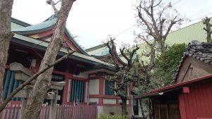 鮫洲八幡神社 八幡造本殿