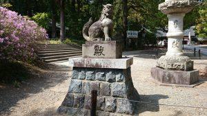 常磐神社 参道狛犬 (1)