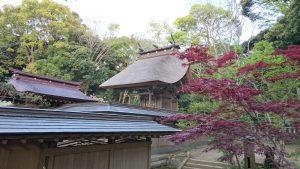 大洗磯前神社 本殿 (1)