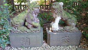 ときわ台天祖神社 境内狛犬