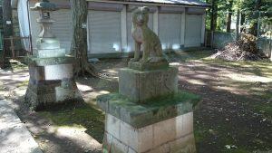 上板橋御嶽神社(桜川御嶽神社) 狼像 (2)