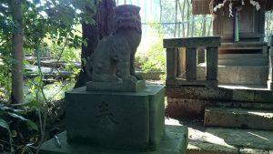 上板橋御嶽神社(桜川御嶽神社) 天祖神社狛犬 (1)
