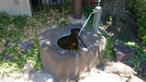 亀戸水神宮(亀戸水神社) 水盤