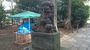 武蔵野八幡宮 明治12年造狛犬 (2)