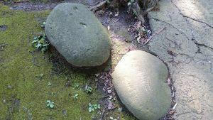 上板橋御嶽神社(桜川御嶽神社) 力石